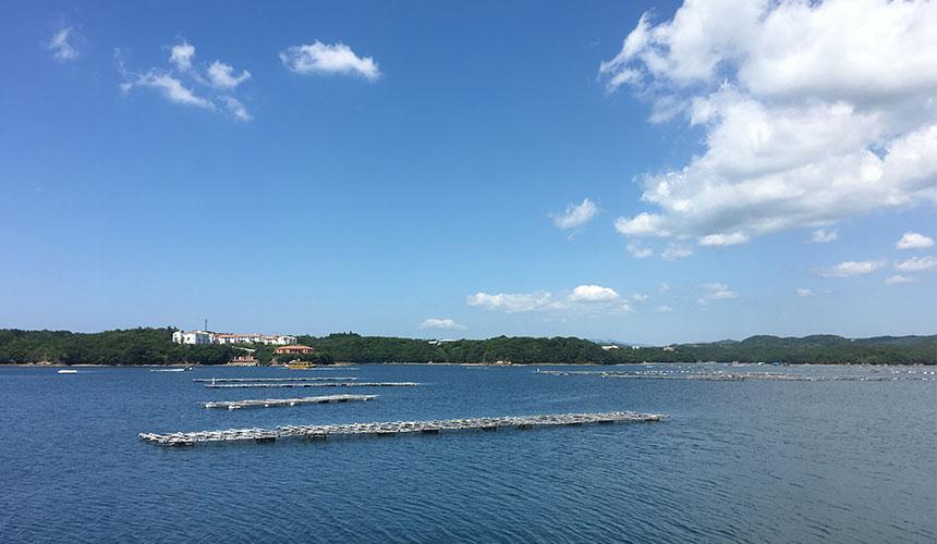 可以在英虞灣看到真珠養殖筏飄浮在海面上的特殊景觀!