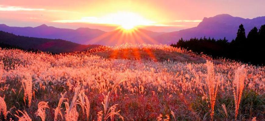 奈良曾爾高原