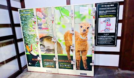 日本關西神戶必去景點「神戶動物王國」南出口的置物櫃