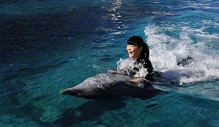 大阪近郊必去複合式動物遊樂園「岬公園」(みさき公園)暑期限定的「water course」可與海豚一起游泳
