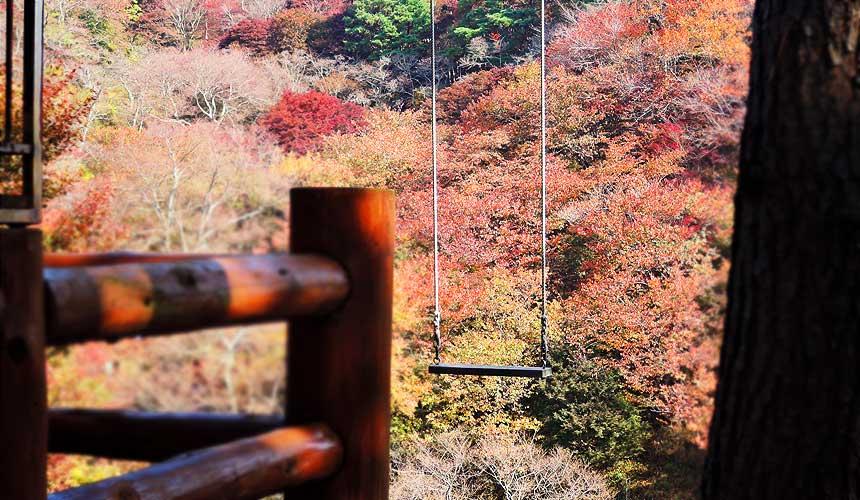 妙见森林的「山上的秋千」看起来很孤独