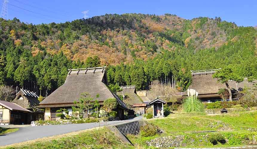 京都「美山茅草屋之鄉」的茅草屋簷