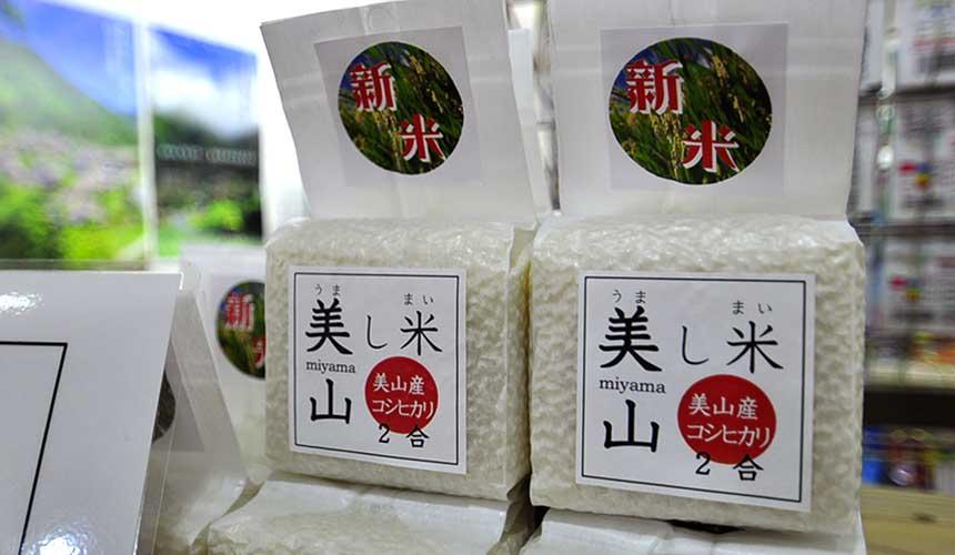 京都「美山茅草屋之鄉」道之驛美山交流廣場販賣的稻米