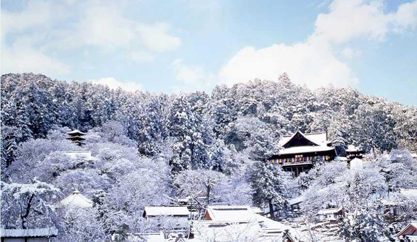 奈良櫻井市的大和國長谷寺冬天雪景