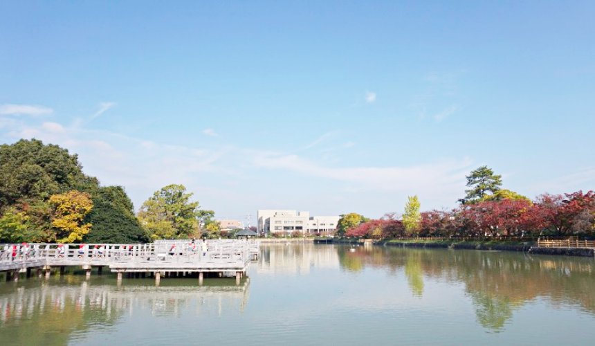 長岡天滿宮「八条ヶ池」