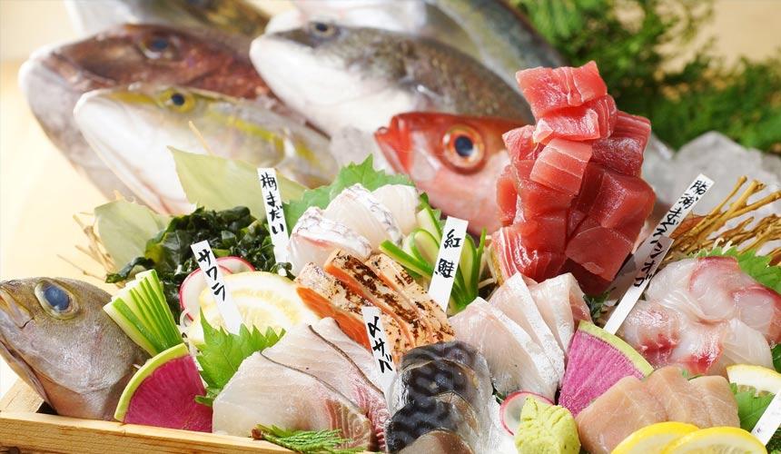 和歌山的新鮮豐富漁產港口直送「魚壱商店」