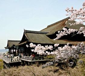 京都的代表景點「清水寺」