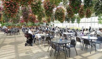 日本關西神戶必去景點「神戶動物王國」的花森林餐廳用餐