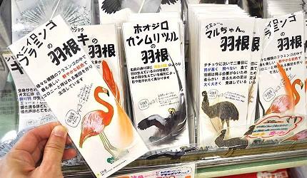 大阪近郊必去複合式動物遊樂園「岬公園」(みさき公園)裡販售的數量限定鳥類羽毛