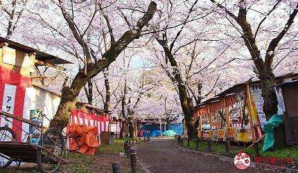 THE POCKET HOTEL 京都四條烏丸附近景點櫻花季