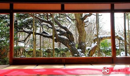 日本京都自由行行程景點推薦攻略懶人包下雪大原三千院