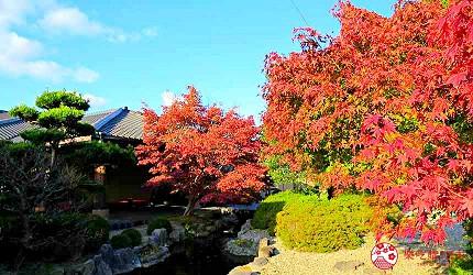 神戶近郊頂級黑毛和牛鐵板燒推薦「三田屋本店安逸之鄉」的庭園秋天美景