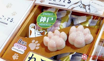日本關西神戶必去推薦景點「神戶動物王國」的限定伴手禮貓咪肉球巧克力