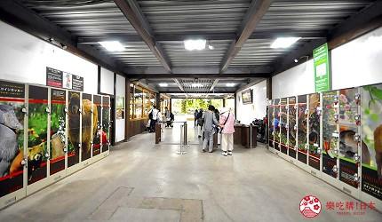 日本關西神戶必去推薦景點「神戶動物王國」的投幣式置物櫃