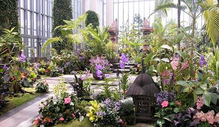关西自由行「淡路岛」环岛一日游行程推荐景点「淡路梦舞台」的奇蹟之星植物馆
