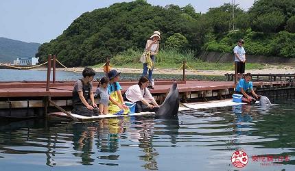 关西自由行「淡路岛」环岛一日游行程推荐景点「淡路 JANOHIRE 户外度假村」与海豚握手