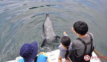 关西自由行「淡路岛」环岛一日游行程推荐景点「淡路 JANOHIRE 户外度假村」与海豚玩游戏