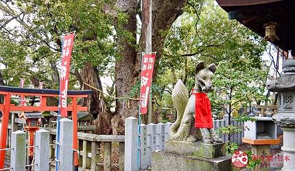關西自由行必去推薦推介大阪難波和泉市保佑生意興隆良緣成就的信太森神社內樹齡約二千年的夫妻樹
